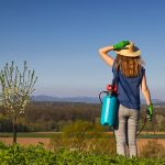 Why Does Pesticide Exposure Increase Parkinson's Risk for Some Individuals?