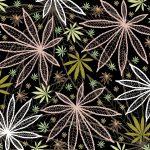 The Cannabis Conundrum