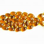Fish Oil to Control Obesity