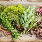 How to be Smart About the Herbal Products You Buy