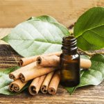 The Healing Scents of Fall & A New Mechanism of Essential Oil Respiratory Protection- The Lung Microbiome: Part II