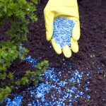 Fertilizer Will Pollute Water for Decades