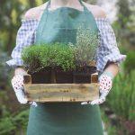 7 Health Benefits of Gardening