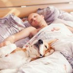 Sleep Helps Heal Traumatic Brain Injuries