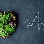 Gut Biodiversity and Atherosclerosis