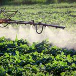 Heavy Use of Herbicide Roundup Linked to Health Dangers