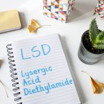 Study: Effect of LSD on Communication Patterns Between Brain Regions