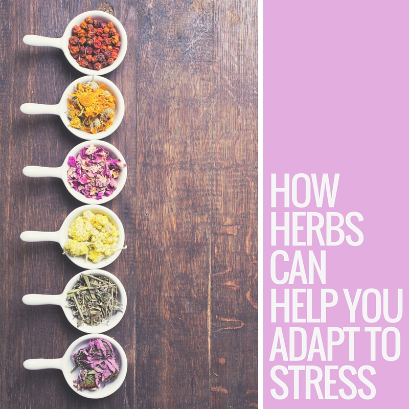 How herbs help you adapt to stress