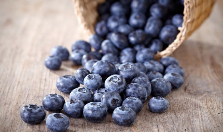 Slideshow: 8 Nutrients That Improve Memory