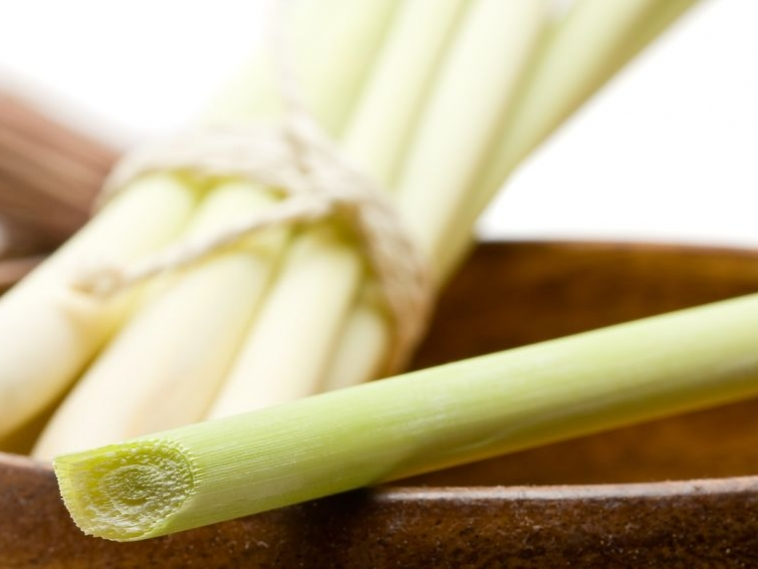 Why Lemongrass and Essential Oil Quality Counts