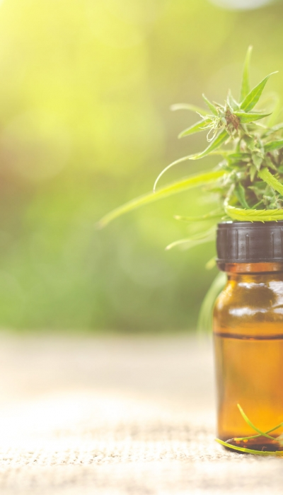 """Gang's all here: CBD Oil, Cannabis Essential Oil, and the Whole """"Entourage"""""""