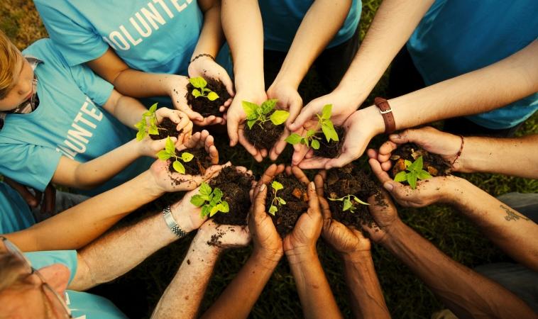 Volunteering Is Good For Everyone