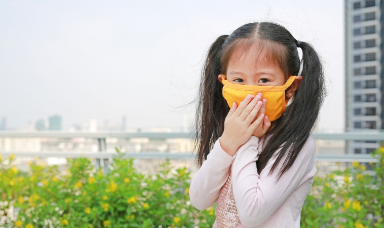 Microorganisms in Bed Dust May Reduce Asthma/Allergy Risk