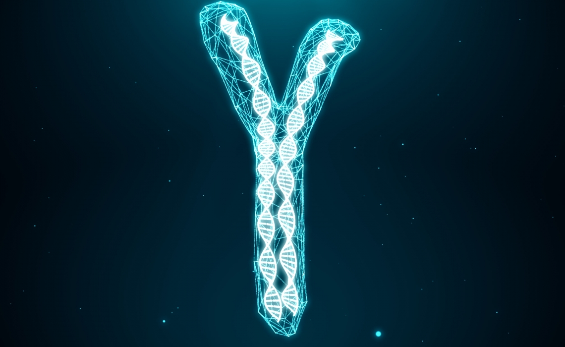 "Men's ""Y"" Chromosome Does More than Thought"