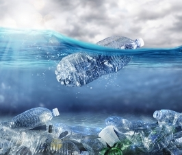 We are Literally Becoming Plastic