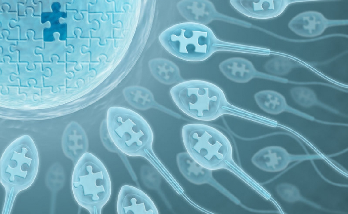Toxins Also Affect Sperm Health Leading to Epigenetic Changes