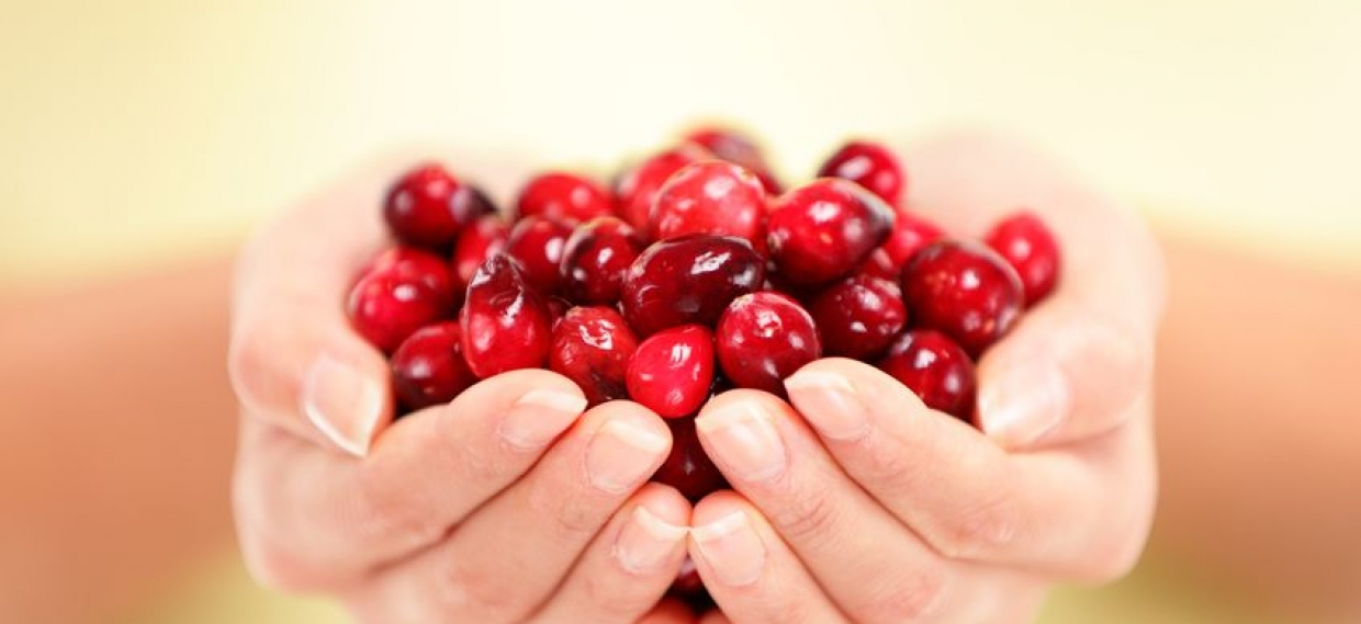 Cranberries Fight Cancer
