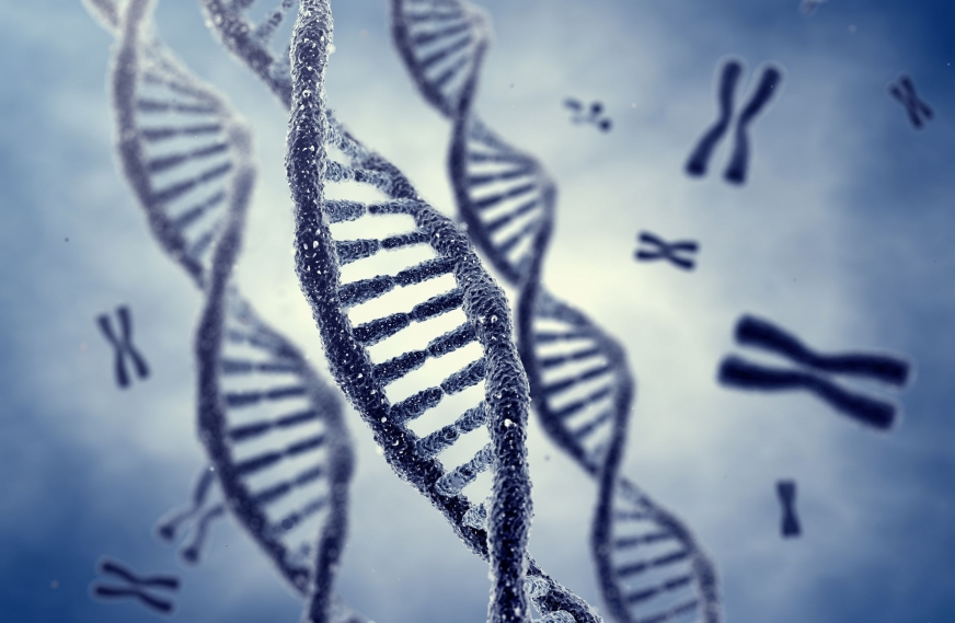 Q&A with James Baird, Author of Behavioral Genes