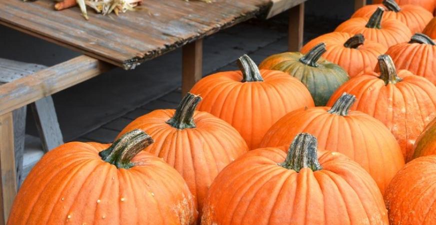 9 Benefits of Eating Pumpkin