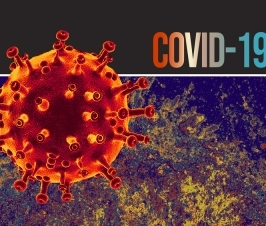 Intellectual Disability is Second Greatest Risk for Death From COVID-19