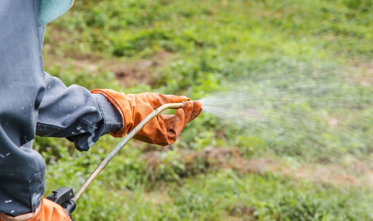 Monsanto's Glyphosate Now Most Heavily-used Weed-Killer in History