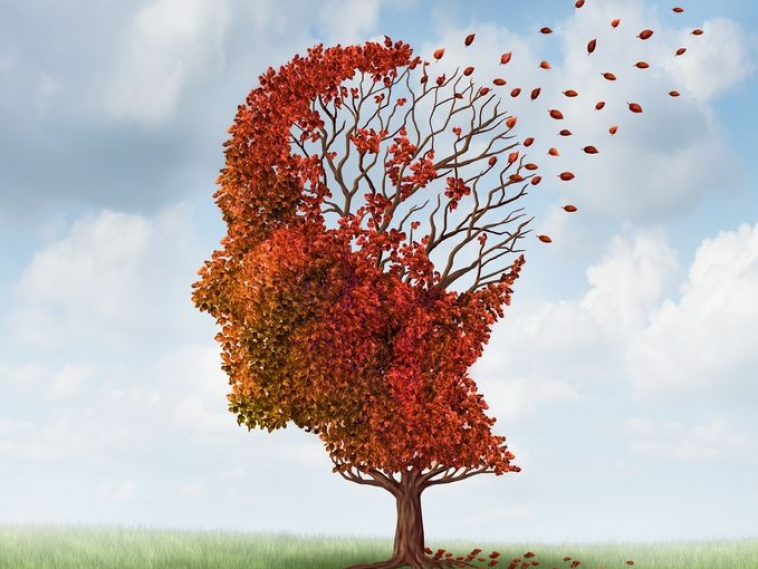 Slideshow: 11 Nutrients to Protect the Aging Brain