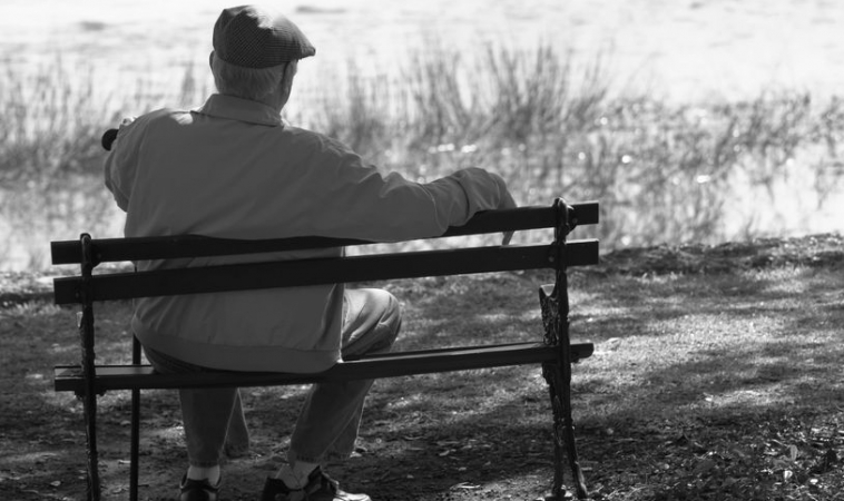 Low-frequency Magnetic Fields Don't Accelerate Alzheimer's Disease and ALS
