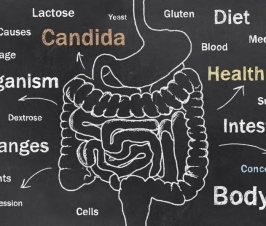 What are Candida Biofilms?