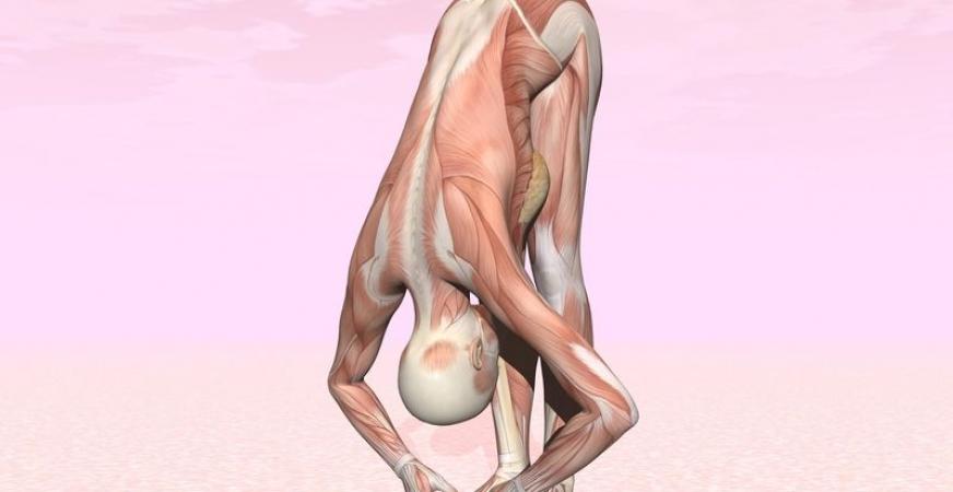 Yoganatomy: Yoga to Enhance Learning