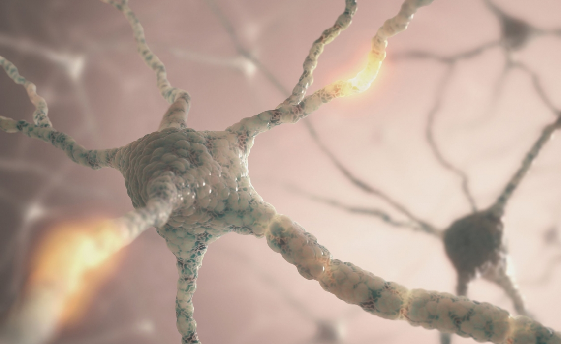 Mysterious Group of Neurons Responsible for Mood Develop During Teen Years