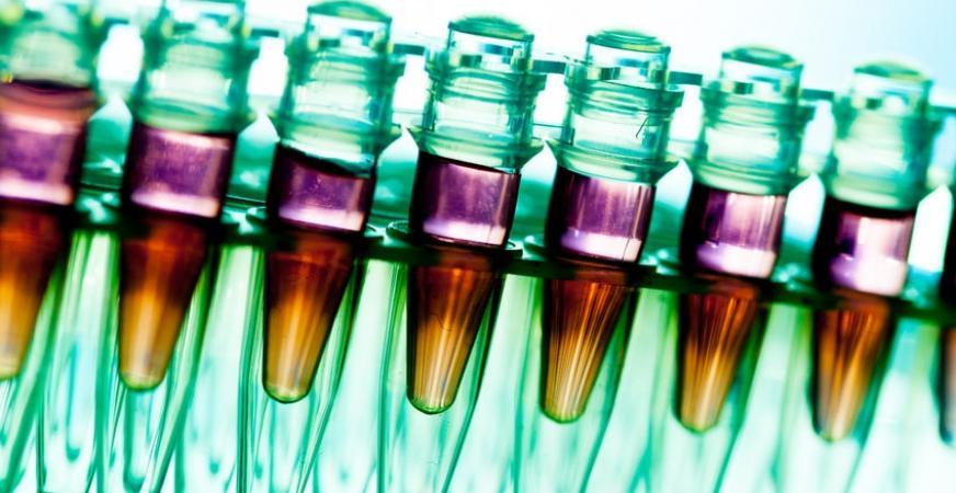 Cancer Researchers Find Drug that Effectively Kills 58 Tumors