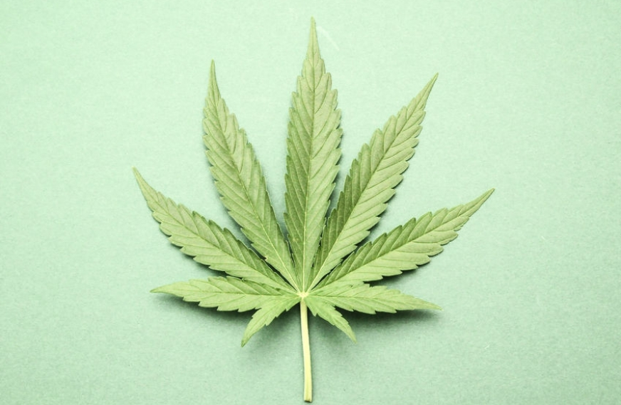 Alternatives to medical marijuana for pain are being developed