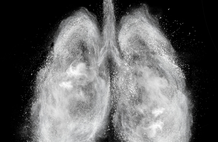 Lung-Inspired Method Turns Water into Fuel