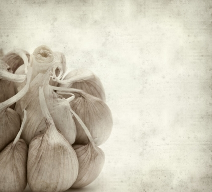 Aged Garlic Lowers Inflammation in the Obese