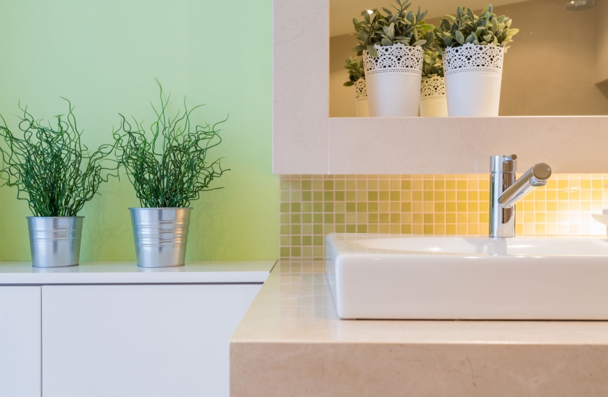 5 Common Houseplants That Clean the Air