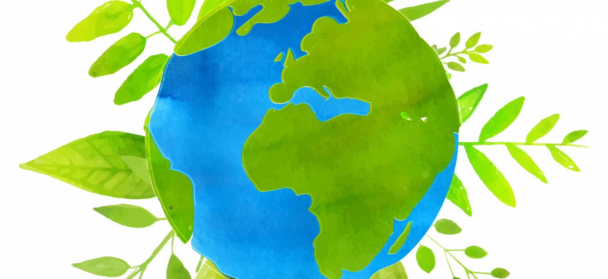 How to Celebrate Earth Day, Everyday