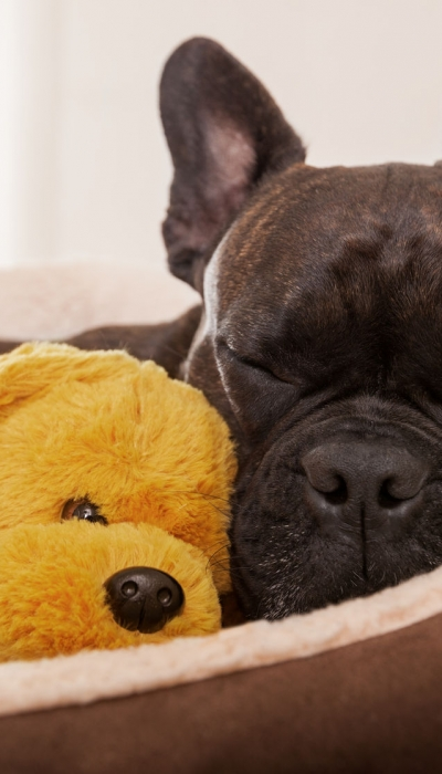 Keeping a consistent sleep schedule can help prevent weight gain