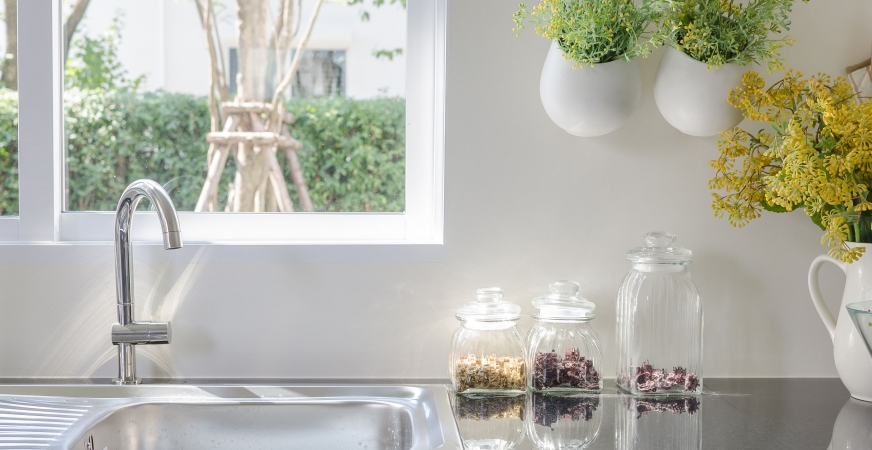 Clear Toxins From Your Home with Plants