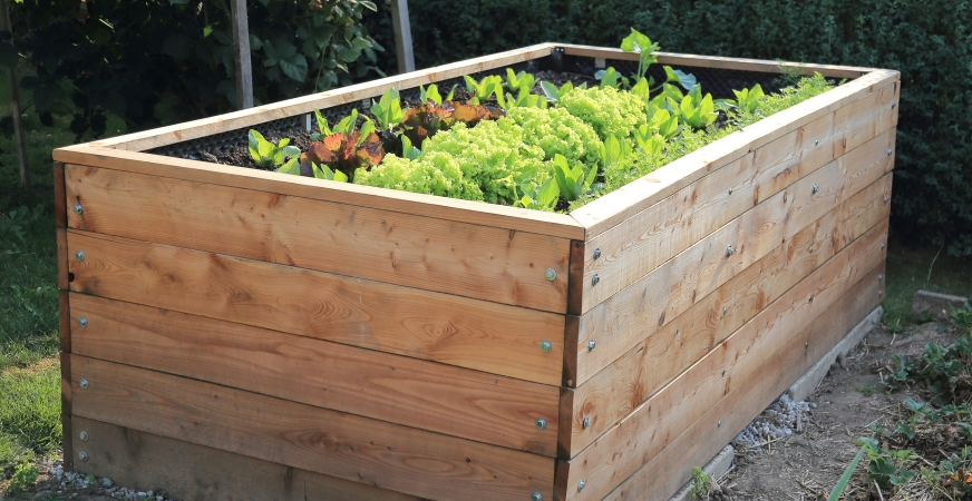 DIY Projects to make your home a greener place