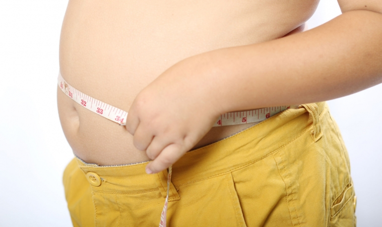 Can A Virus Make You Fat?