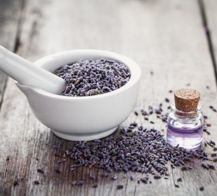 Focusing on Body Health vs. Symptom Control: Autoimmunity and Essential Oils (Pt II)