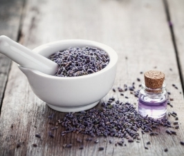 Focusing on Body Health vs. Symptom Control: Autoimmunity and Essential Oils (Pt II)