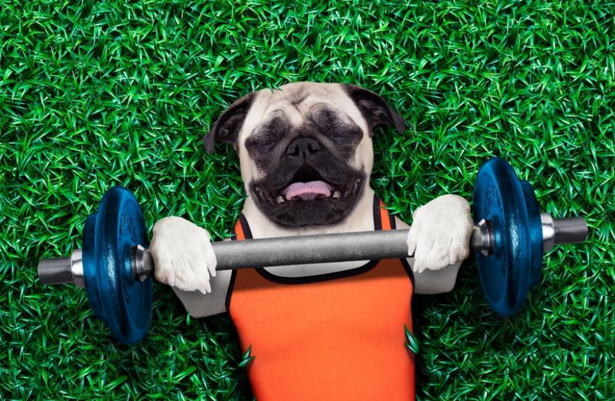 When Good Exercise Goes Bad (Optimization Tips)
