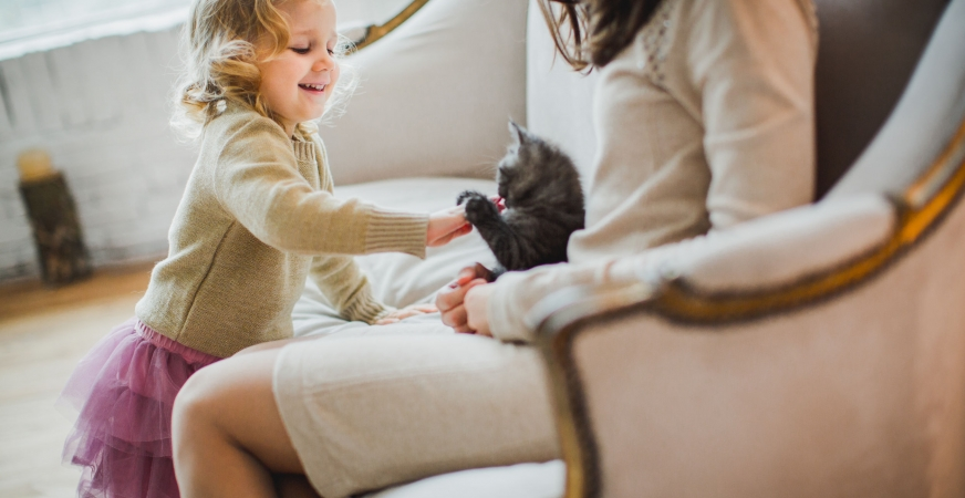 Is Animal-Assisted Therapy Undervalued as an Alternative Treatment?