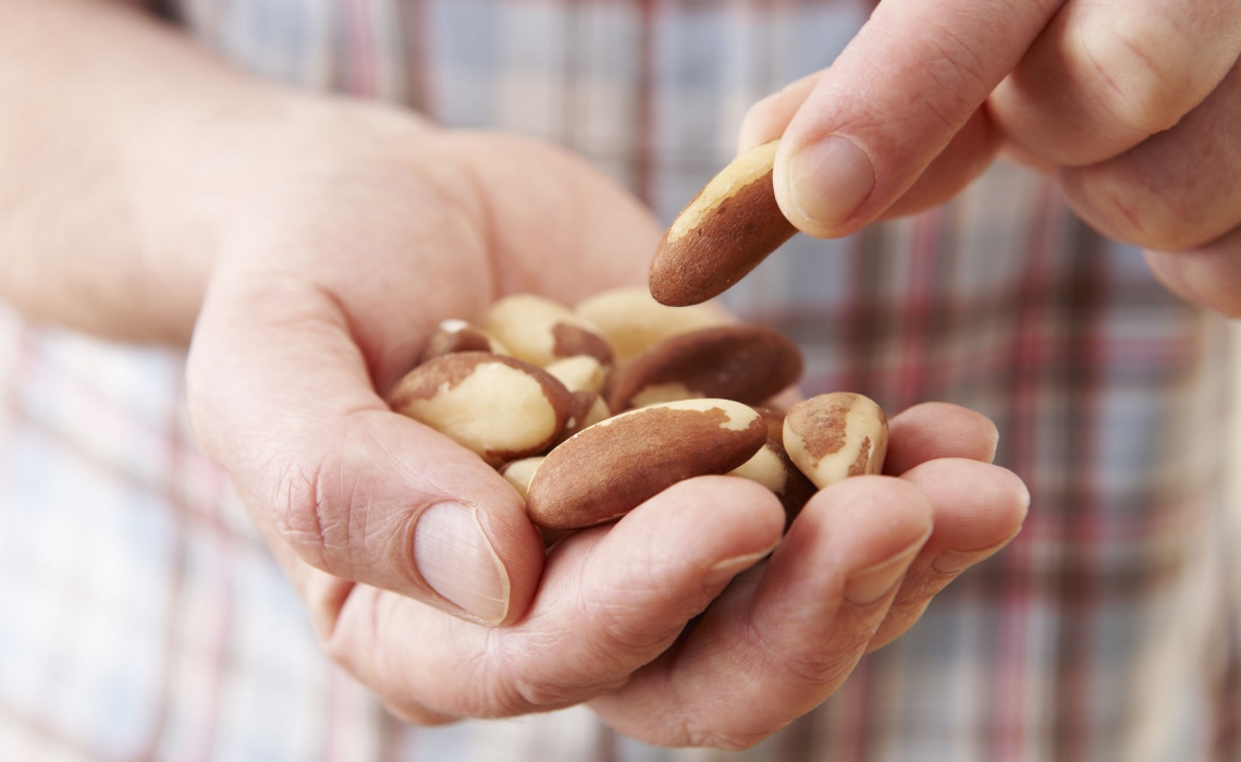"A Handful of Nuts ""Keeps the Doctor Away"""