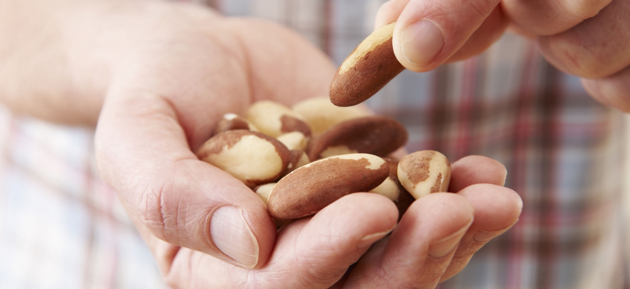 """A Handful of Nuts """"Keeps the Doctor Away"""""""