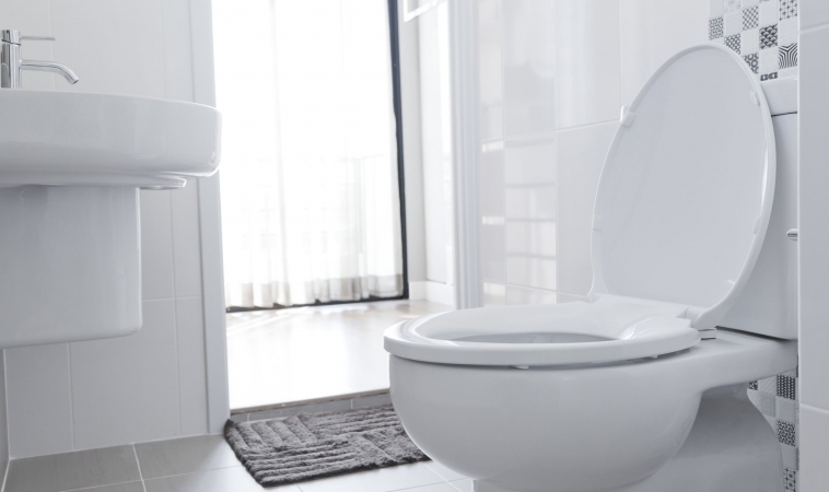 Could 'Smart Toilets' Replace Lab Testing?