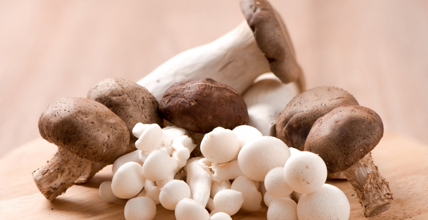 Top Foods for Hair Health