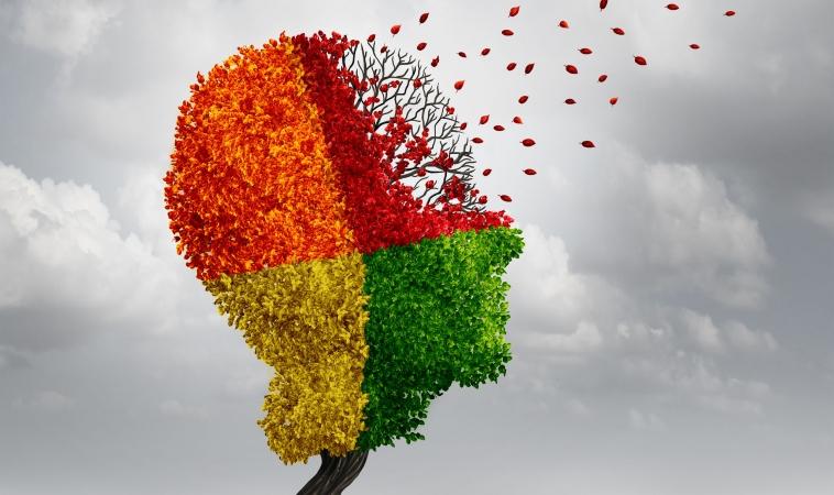 Further Illumination on Long-lasting Effects of Mild Brain Trauma
