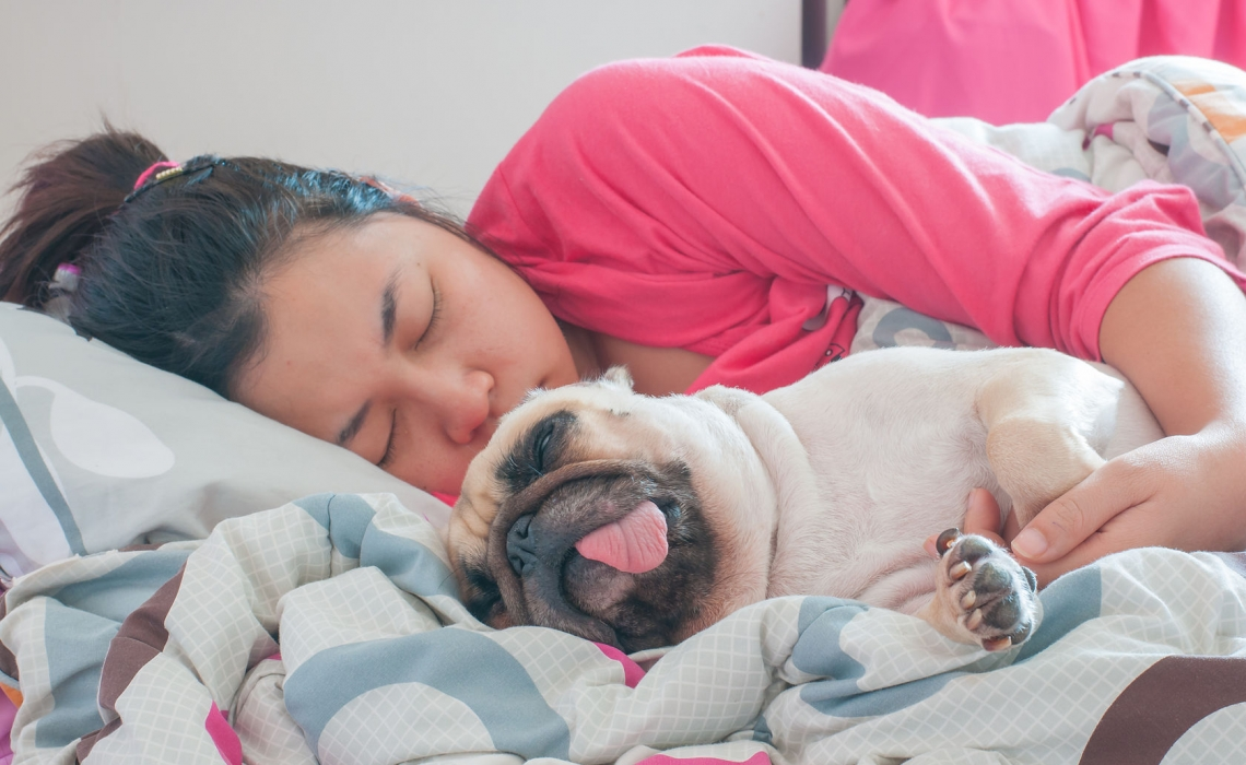 9 Habits of Healthy Sleep and Facing the Day Fully Rested